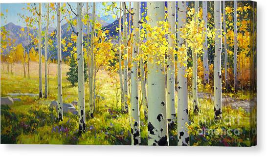 Horizontal Canvas Print - Afternoon Aspen Grove by Gary Kim