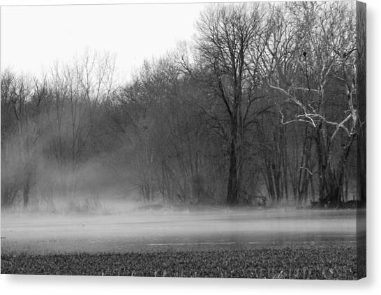 Afternoon Fog Rising Canvas Print by Michelle Hastings