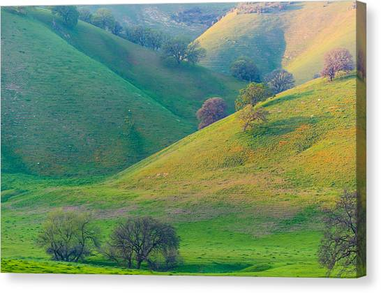 Contra Canvas Print - Afternoon Light On Hills by Marc Crumpler