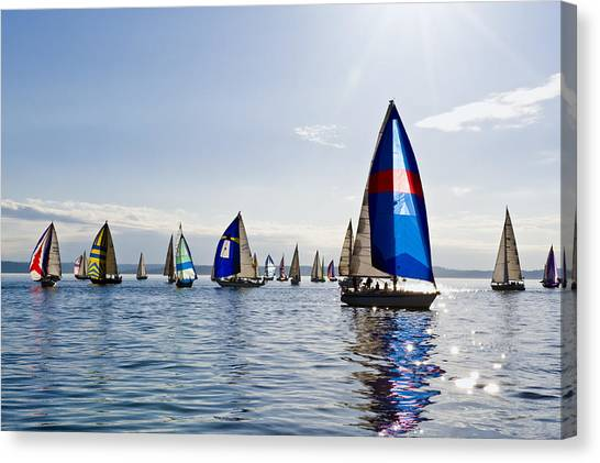 Afternoon Sailing Canvas Print by Tom Dowd