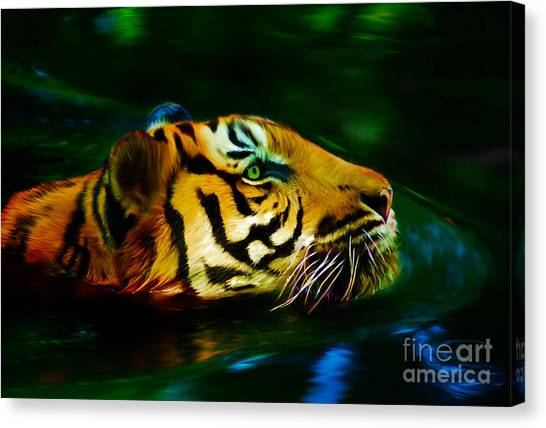 Afternoon Swim - Tiger Canvas Print