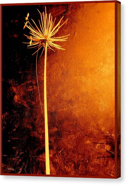 Agapanthus After The Storm Canvas Print