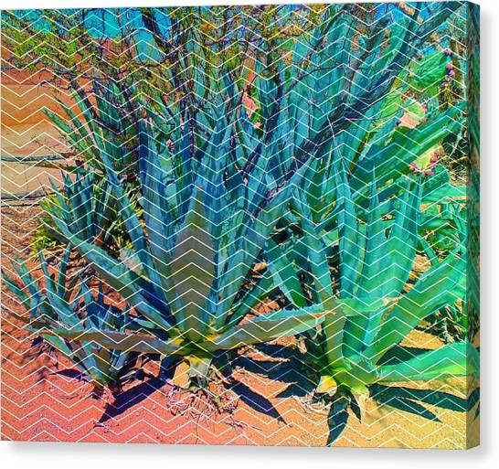 Canvas Print featuring the mixed media Agave by Michelle Dallocchio