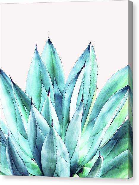 Agave Vibe Canvas Print