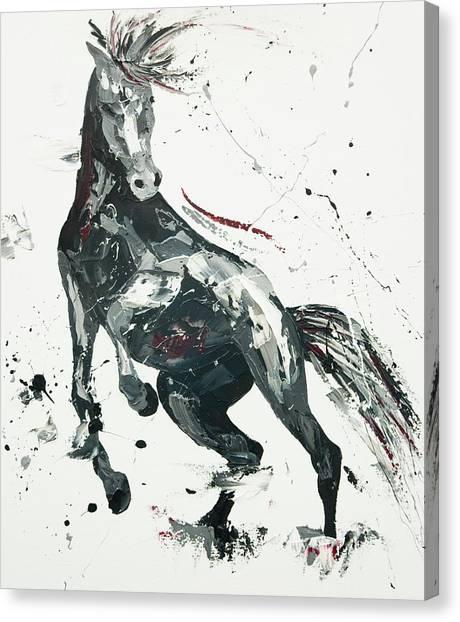 Wild Horse Canvas Print - Agitato Fervour by Penny Warden