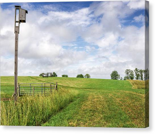University Of Connecticut Canvas Print - Agricultural Landscape With Birdhouse by Phil Cardamone