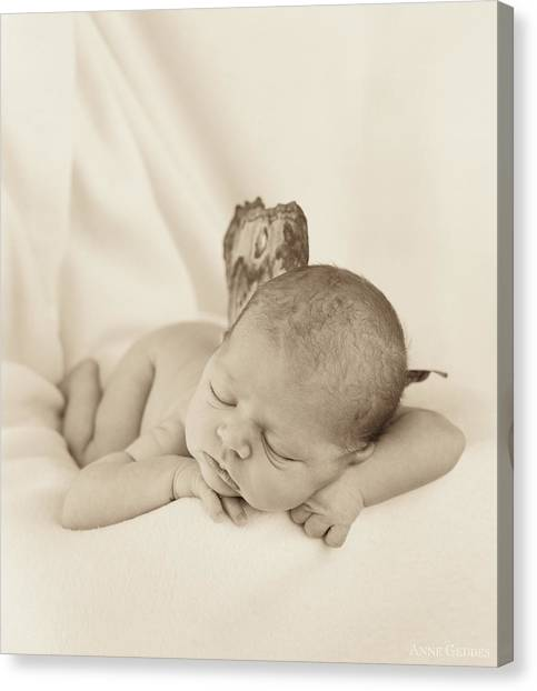 Fairy Canvas Print - Aimee As A Fairy by Anne Geddes