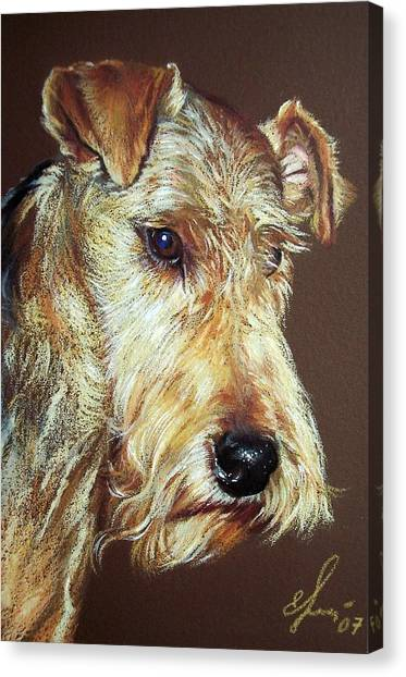 Airdale Terrier Canvas Print