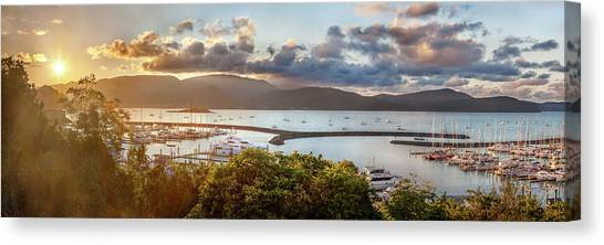 Catamarans Canvas Print - Airlie Beach Marina by Az Jackson