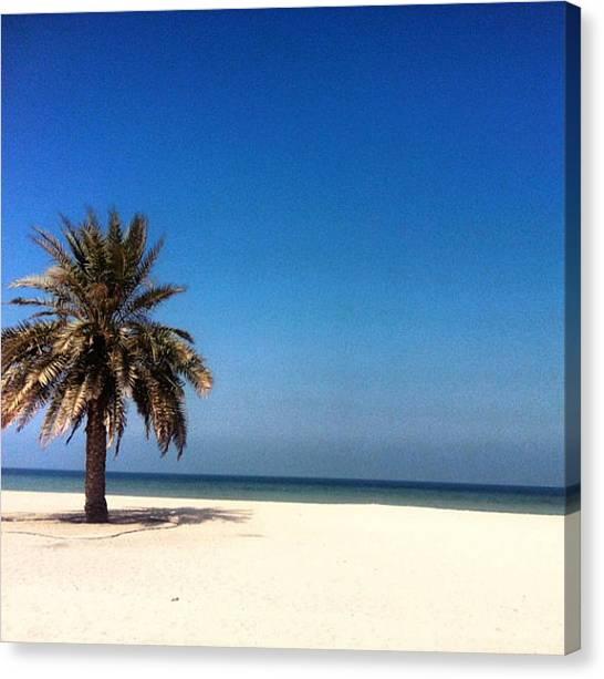 White Sand Canvas Print - Ajman Beach  by Samantha Lai