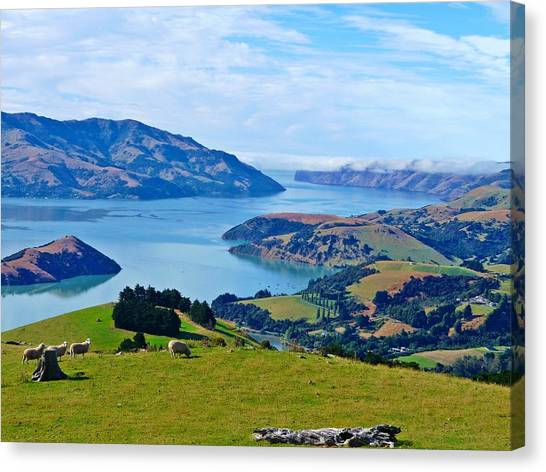 Akaroa View Canvas Print