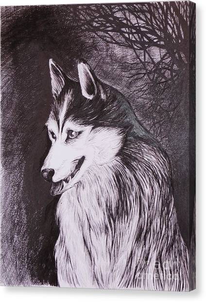 Akela Canvas Print by Anna  Duyunova