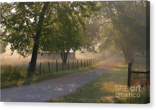Alabama Country Road Canvas Print by Don F  Bradford