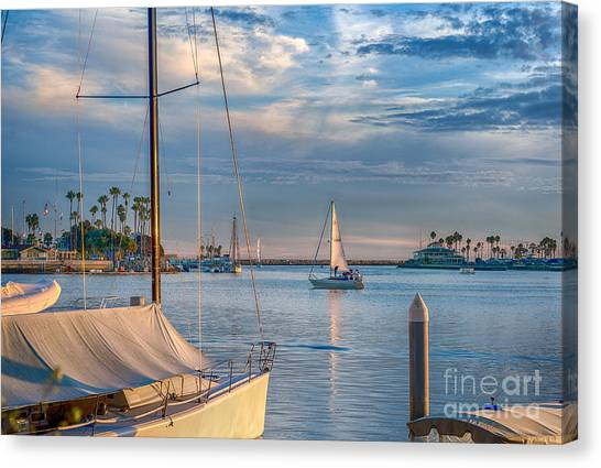 Alamitos Bay Inlet Sailboat Canvas Print