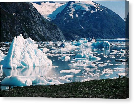 Alaska In The Spring Canvas Print