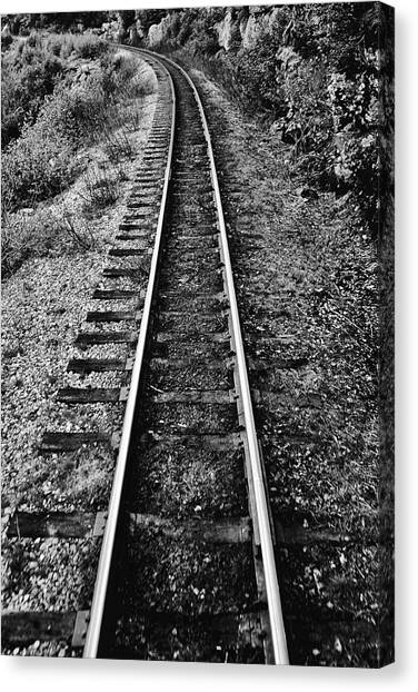Alaska Tracks Canvas Print