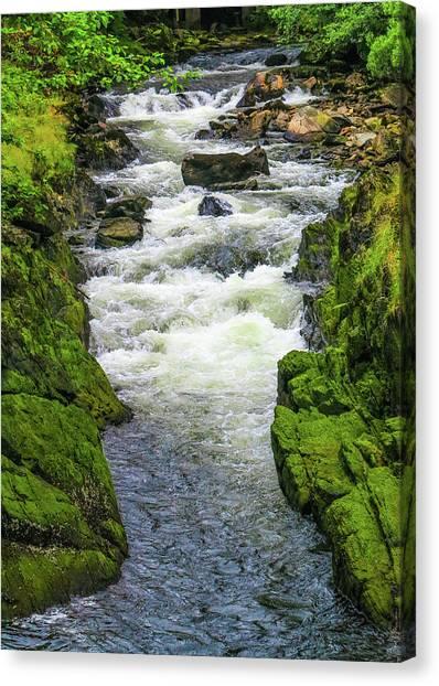 Alaskan Creek Canvas Print