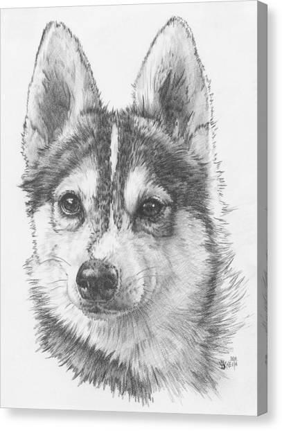 Alaskan Klee Kai Canvas Print