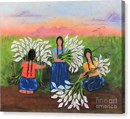 Alcatraces En Primavera Canvas Print