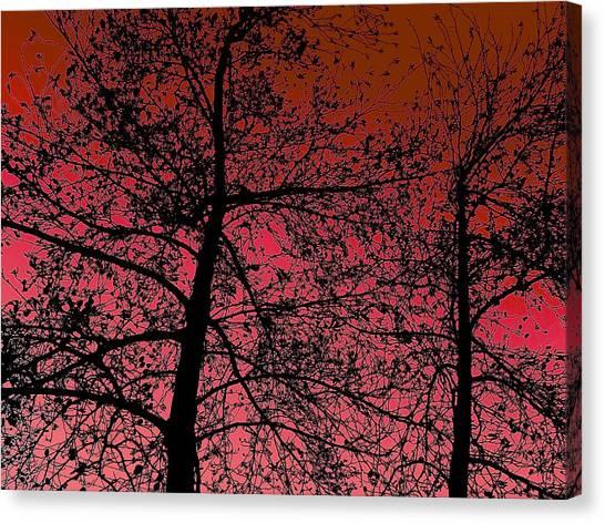 Alder Trees Against The Winter Sunrise Canvas Print