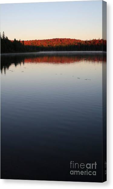 Algonquin First Light Canvas Print by Chris Hill