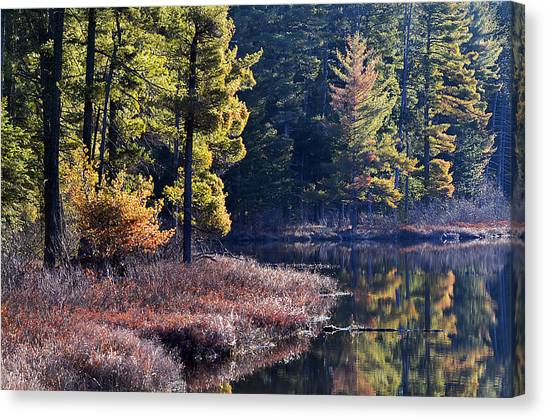 Algonquin Sunrise Reflection Canvas Print