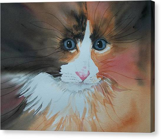 Ali Cat Abstract Canvas Print