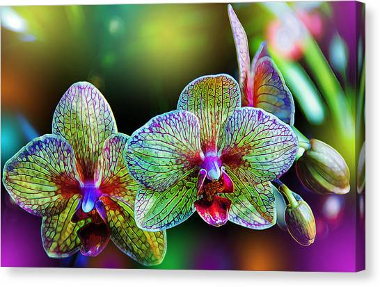 Glowing Canvas Print - Alien Orchids by Bill Tiepelman