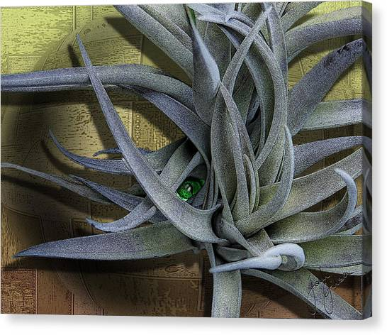 Alien Peek-a-boo Canvas Print