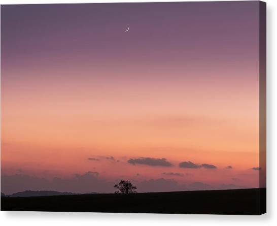 Alignment Canvas Print