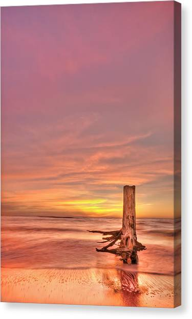 Sun Canvas Print - All Aglow by Evelina Kremsdorf