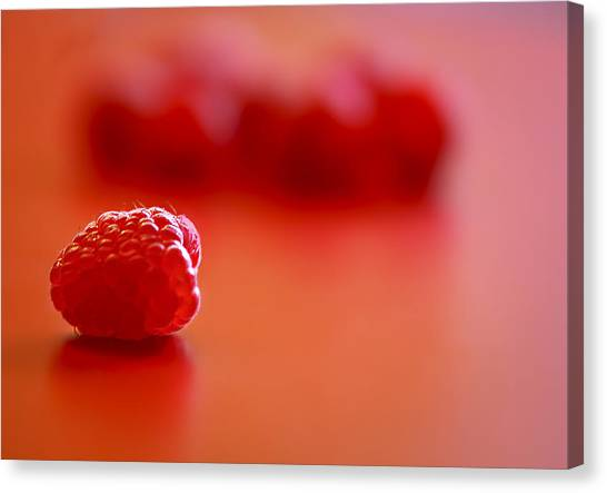 Raspberries Canvas Print - All Alone by Evelina Kremsdorf
