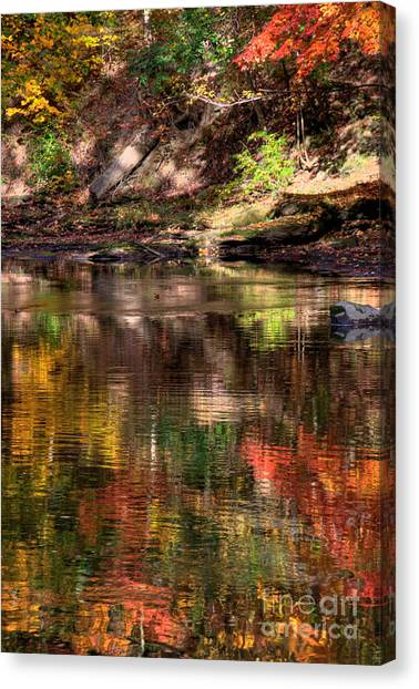 All I See Is Color Canvas Print by Tony  Bazidlo