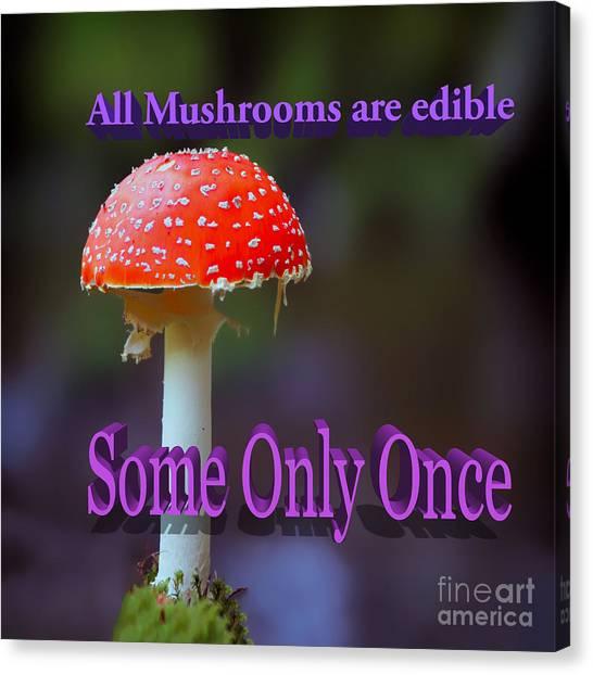 Psychedelic Mushroom Canvas Prints Fine Art America