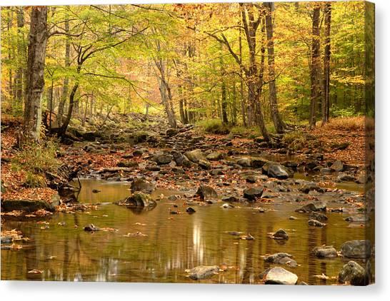Allegheny Fall Canvas Print by Eric Foltz