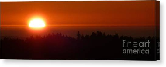 Almost Gone Canvas Print by JoAnn SkyWatcher