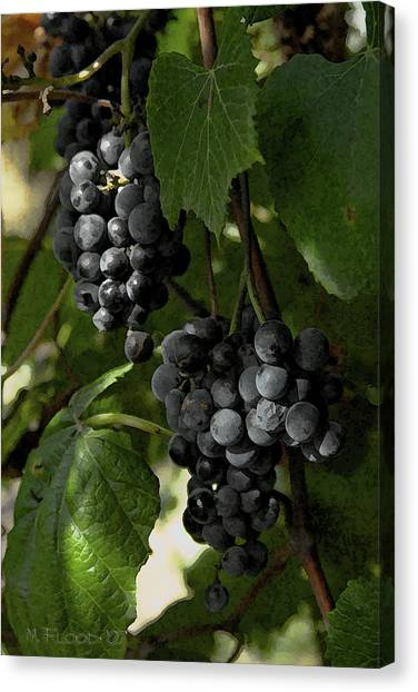 Almost Harvest Time Canvas Print by Michael Flood