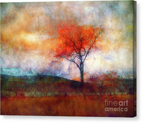 Alone In Colour Canvas Print
