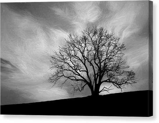 Barren Canvas Print - Alone On A Hill In Black And White by Tom Mc Nemar