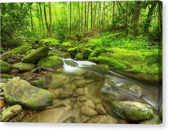 Tumbling Canvas Print - Along The Banks Of The Roaring Fork by Stephen Stookey