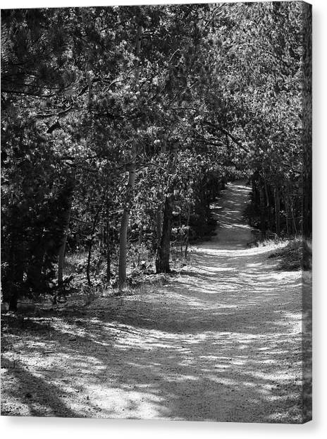 Along The Barr Trail Canvas Print