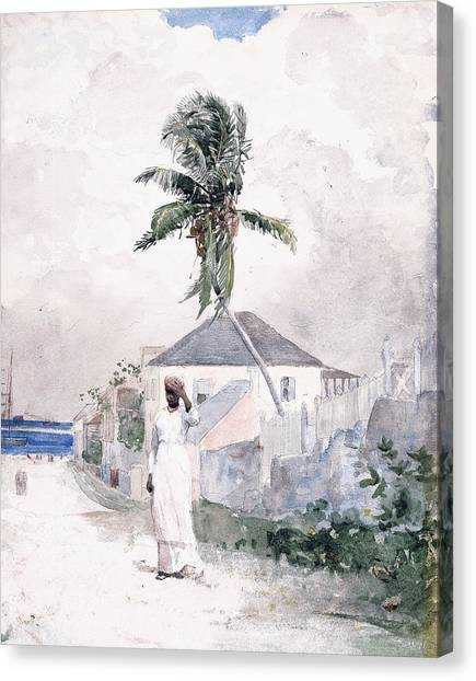 Winslow Canvas Print - Along The Road   Bahamas 1885 by Winslow Homer