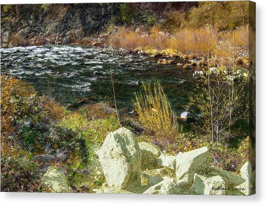 Along The Stream Canvas Print