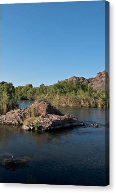 Along The Verde River 13 Canvas Print by Susan Heller