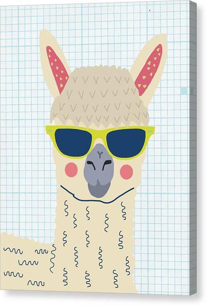 Funny alpaca canvas print alpaca by nicole wilson