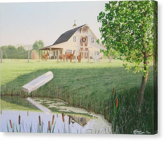 Alpaka Farm Canvas Print