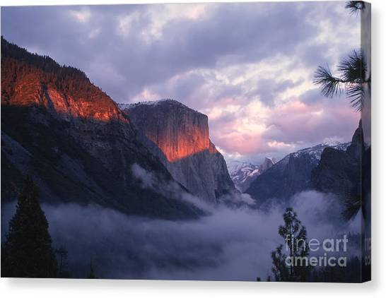 Alpen Glow On El Capitan Canvas Print by Stan and Anne Foster