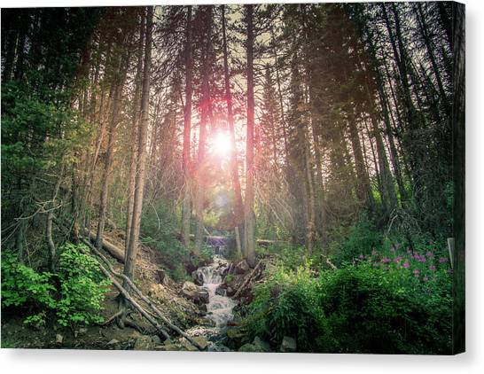 Alpine Flare Canvas Print