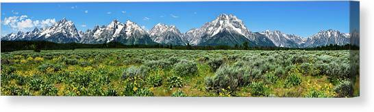 Alpine Meadow Teton Panorama II Canvas Print