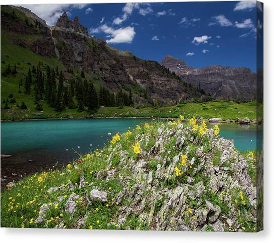 Offroading Canvas Print - Alpine Sunflowers Along The Shore Of A Turquoise Lake by Bridget Calip